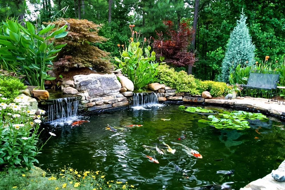 Ponds waterfalls 101 artistic landscapes for Fish pond landscaping