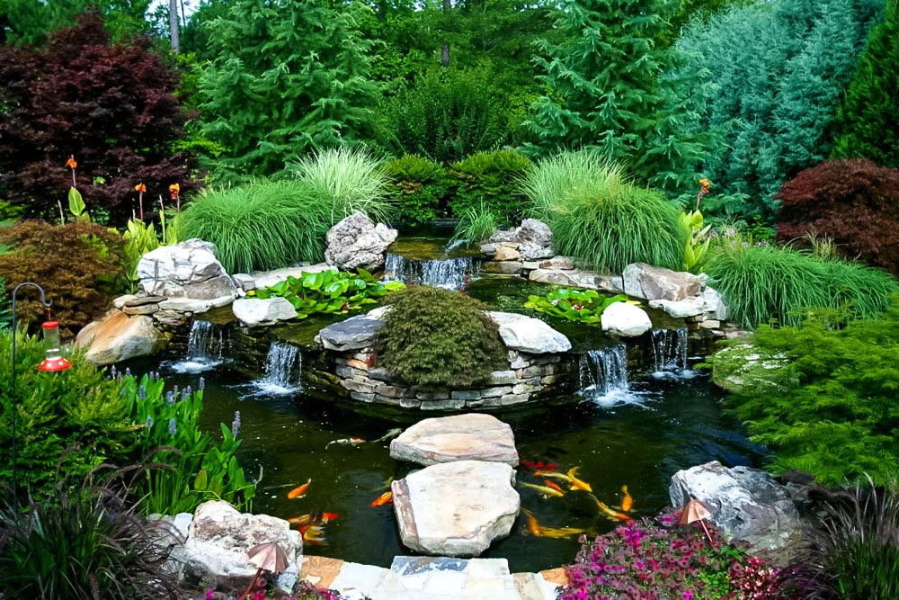 Water features artistic landscapes for Koi pool design