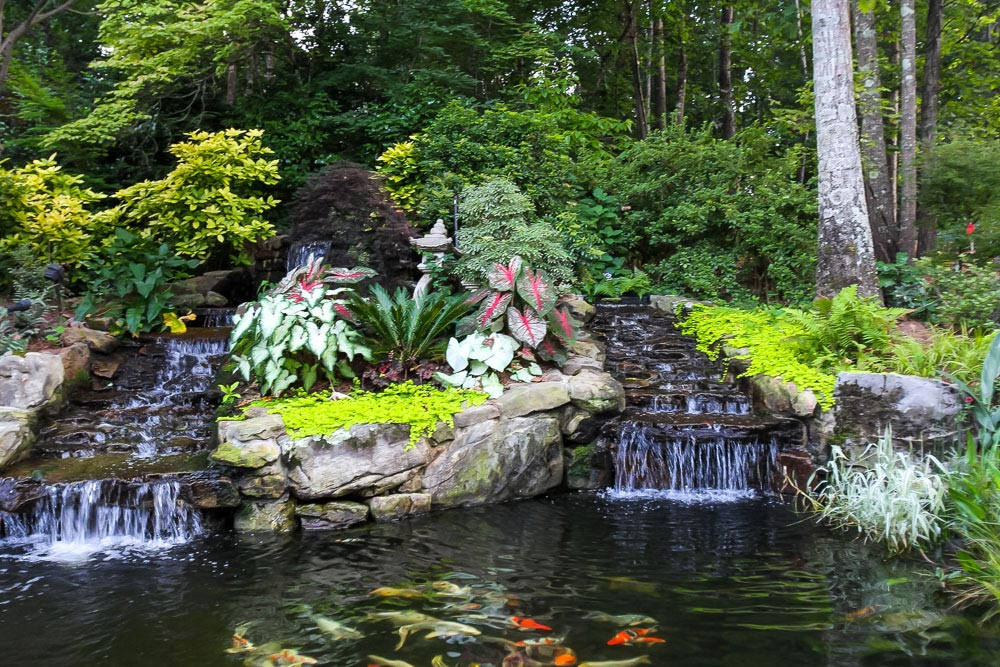 Water features artistic landscapes for Keeping koi in a pond